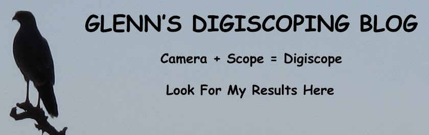 Glenn's Digiscoping Blog