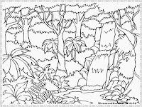 gambar mewarnai hutan rimba