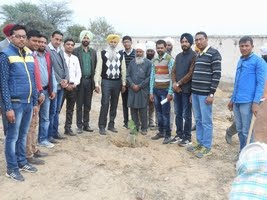 ਰੁੱਖ ਲਗਾਉਣਾ Tree Plantation