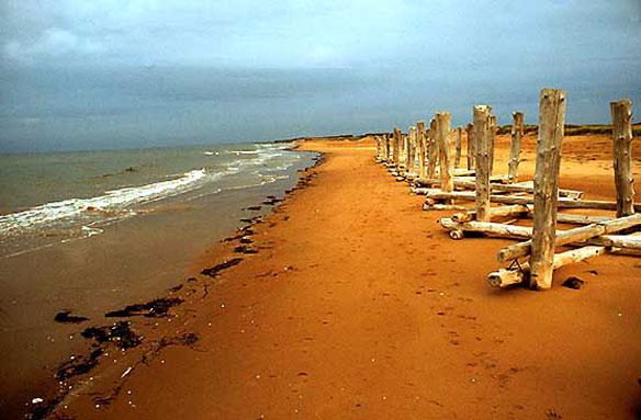 Ece 273 Sand Blog Sand Of The World