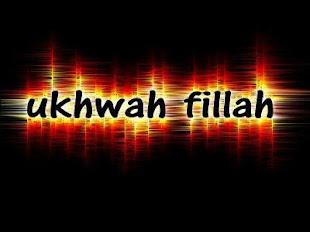 BERSATU UMNO DAN PAS ATAS AGAMA ISLAM