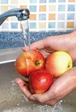 Valor nutritivo de los alimentos higiene alimentaria - Higiene alimentaria y manipulacion de alimentos ...
