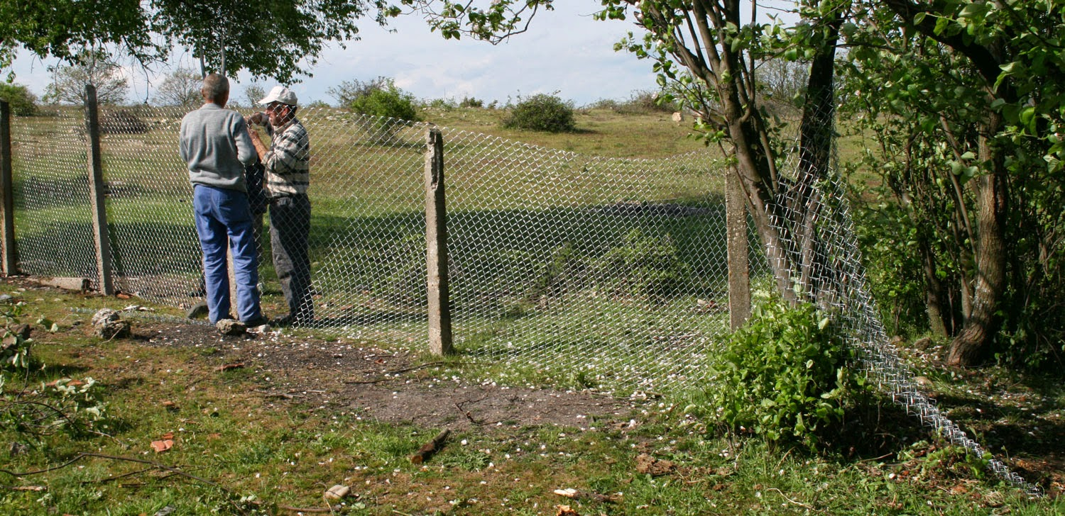 Yet another picture of Bekir and Sally fencing