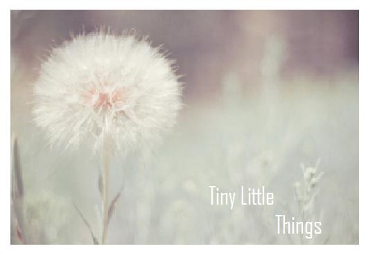 TinyLittleThings