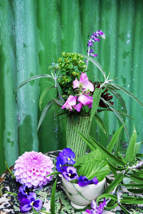dahlias, sweet peas and pansies via small acorns blog