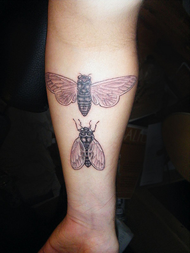 Read More Bug Tattoos Part 2