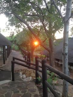 Krugerpark, restcamp Punda Maria