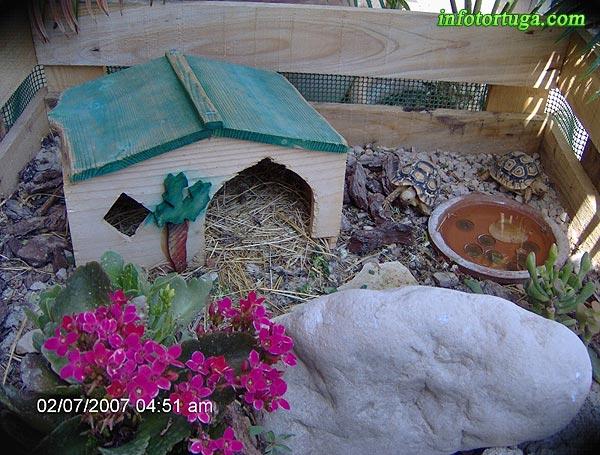 Un zoo en casa instalaciones para tortugas terrestres - Como construir un terrario ...