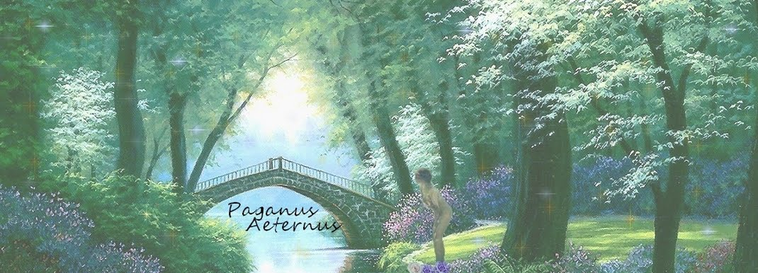 http://1.bp.blogspot.com/-hGGl9JdRhLc/T0aC8quefmI/AAAAAAAAAA8/SPgCnyvvYew/s1600/paganus%2Baeternus.jpg