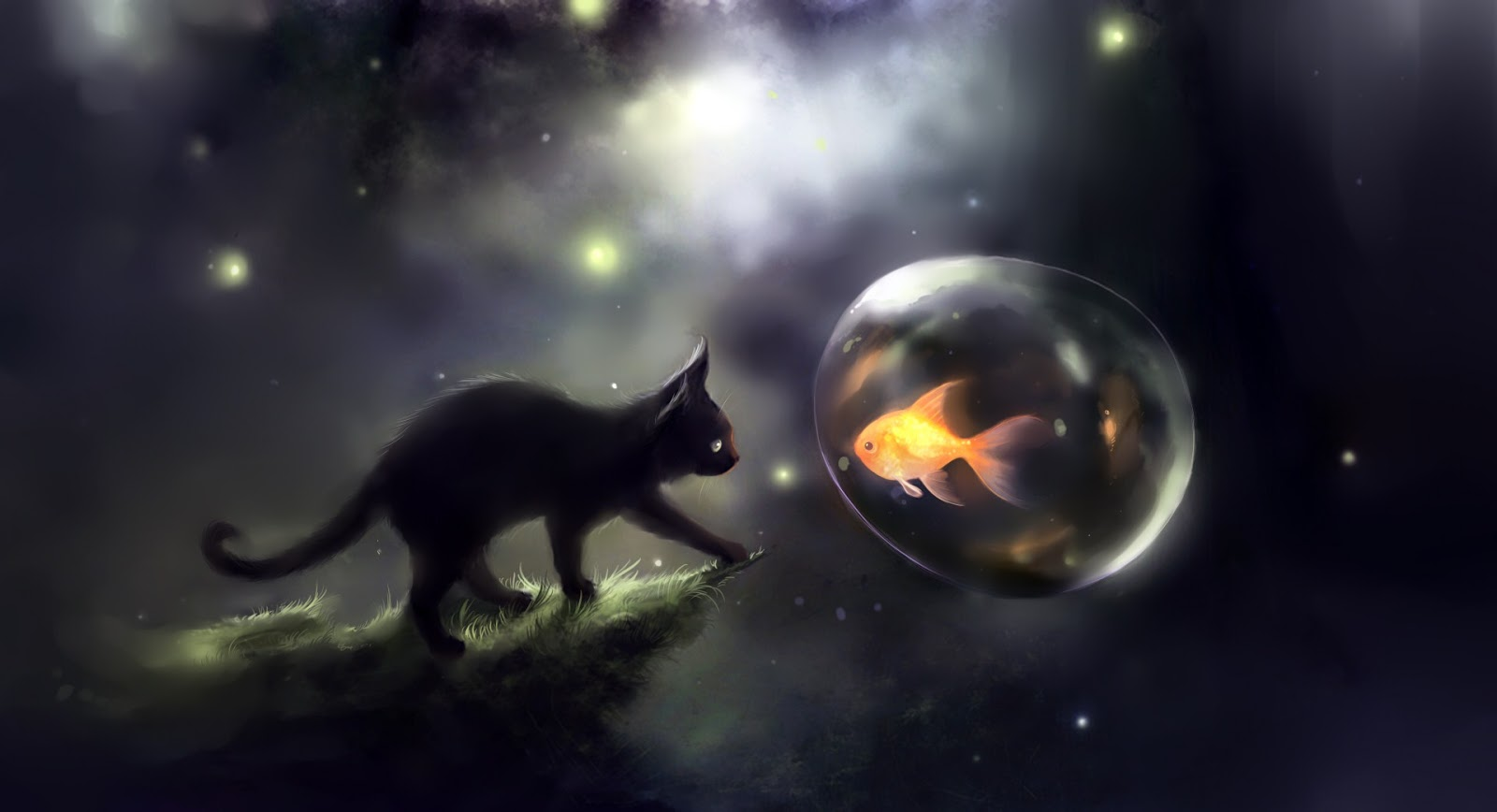 Black Cat And Goldfish Wallpaper Download 1600 X 868 Beautiful