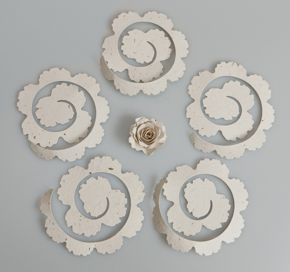 Razzle dazzle rose handmade paper flowers to make these gorgeous recycled paper flowers firstly you need to purchase one of our paper kit from our website hererazzledazzlerose mightylinksfo