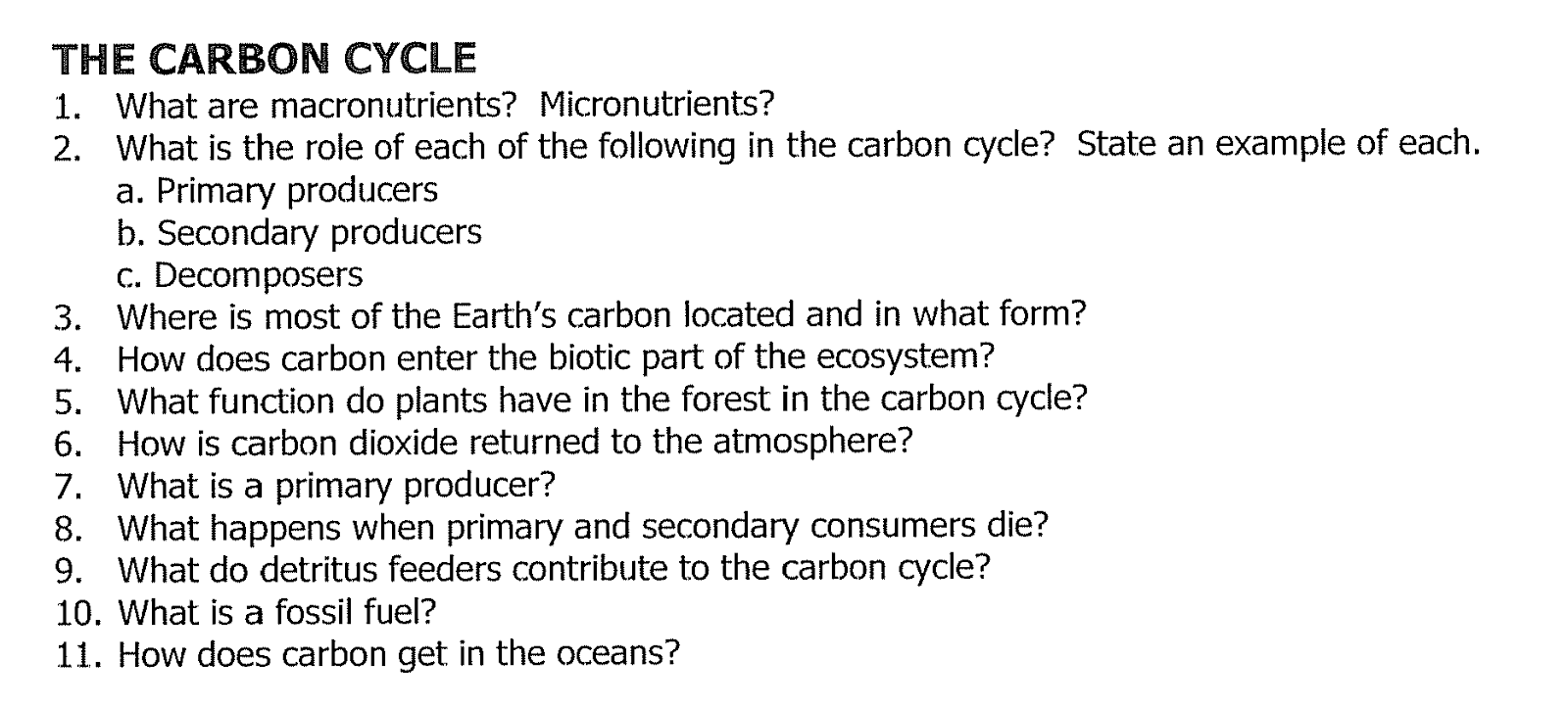 Carbon cycle essay