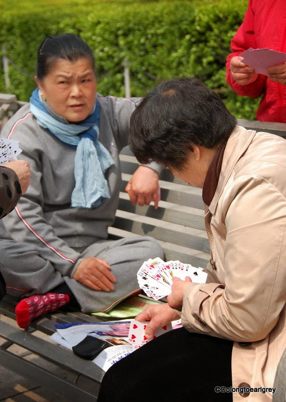 Card game, Fuxing Park, Shanghai China