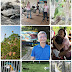 CWNTP 福智佛教基金會「關廟護生教育示範園區」 體認尊重萬物生命價值 萬物及環境的天人合一的和諧關愛