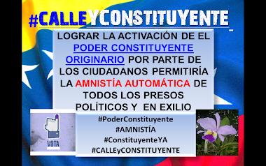 #PoderConstituyente = #AmnistíaAutomática