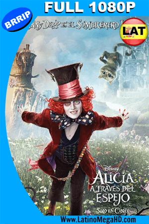 Alicia a través del espejo (2016) Latino Full HD  1080P ()