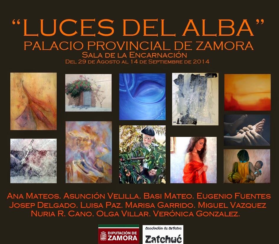 Exposición Palacio Provincial de Zamora
