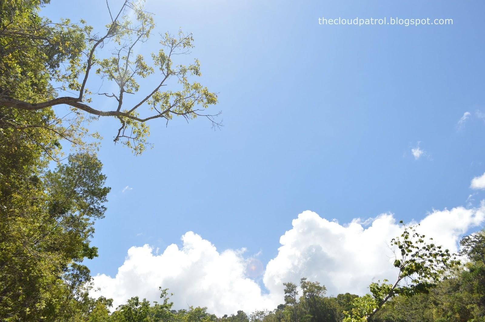 Butanding, whale shark, cebu, oslob, philippines, Tumalog, Waterfalls, mountain, hiking, hike, treking, trek, nature, clouds, blue sky, sky