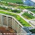 Cara Bikin Taman Atap (Roof Garden) diatas Dak Beton dengan VersiCell