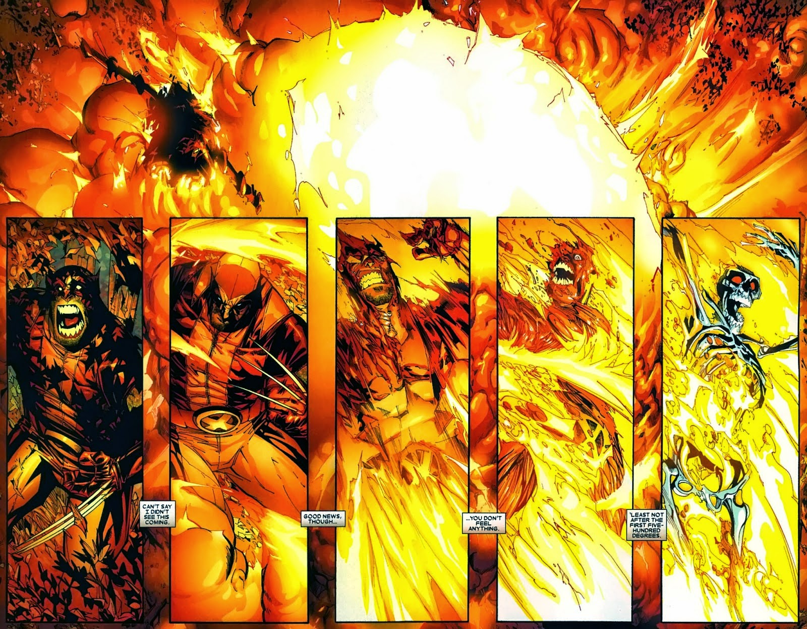 Wolverine incinerado