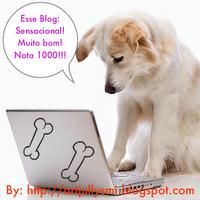 D0 blog decorflorindounhas!!