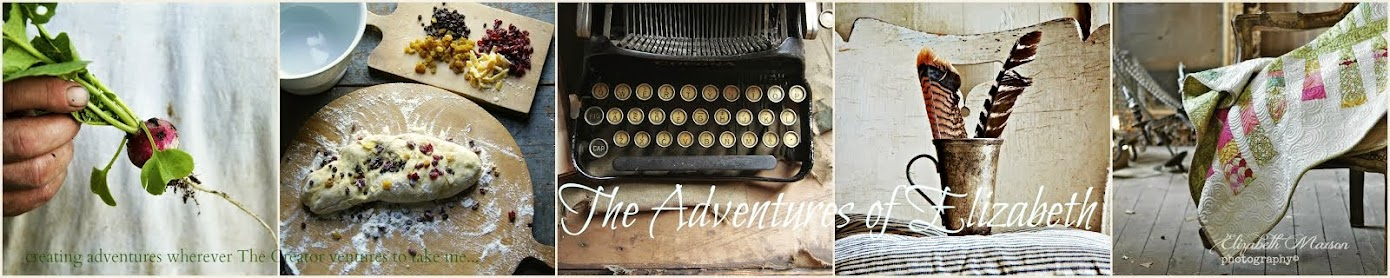 The Adventures of Elizabeth