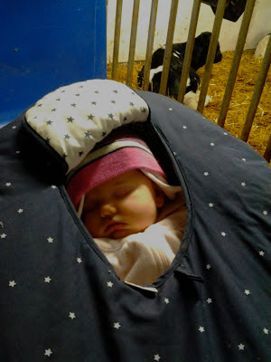 baby bundled up in carseat, sleeping in barn