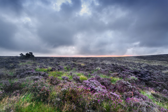 A view over the Exmoor moor land on an overcast morning by Martyn Ferry Photography