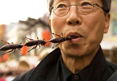 Comer Insetos