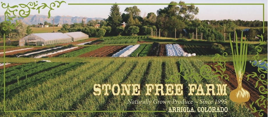 Stone Free Farm - Four Corners Fresh Produce