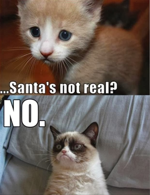 The Christmas Blog 2017: This Christmas Grumpy Cat And Friends ...