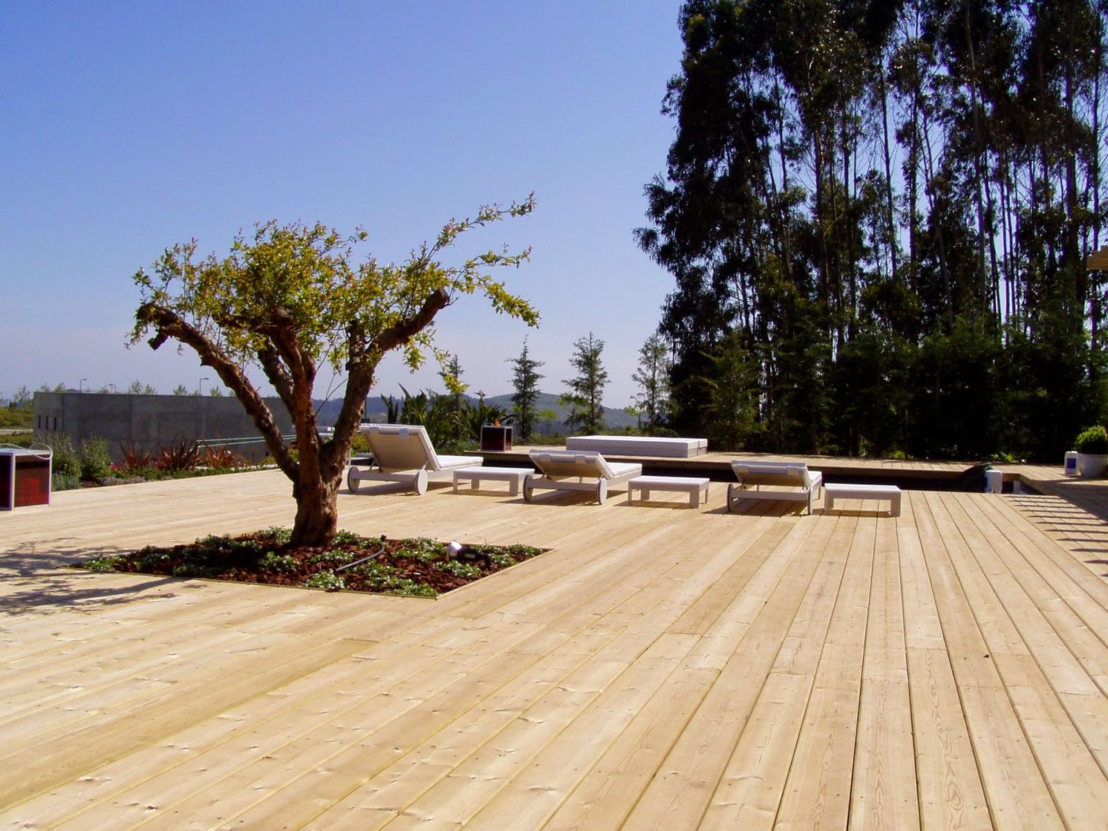 aplicacao deck jardim:Um jardim para cuidar: O encanto de um deck de madeira nacional !