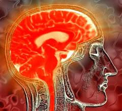 Dentro do Cérebro: Uma Viagem Interativa