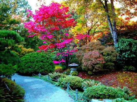 Arte y jardiner a como dise ar un jardin - Como disenar un jardin grande ...