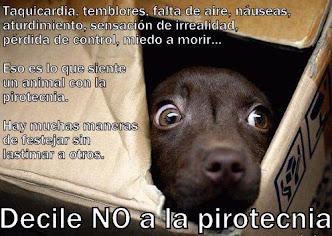 No a la PIROTECNIA
