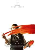 Mr. Turner (2014) DVDRip Latino