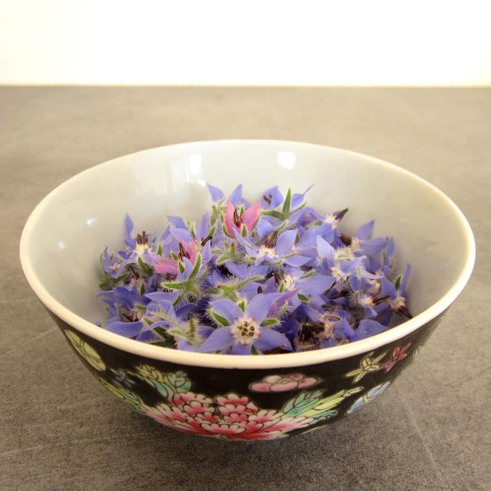 Fleurs de Bourrache - http://spicerabbits.blogspot.fr/