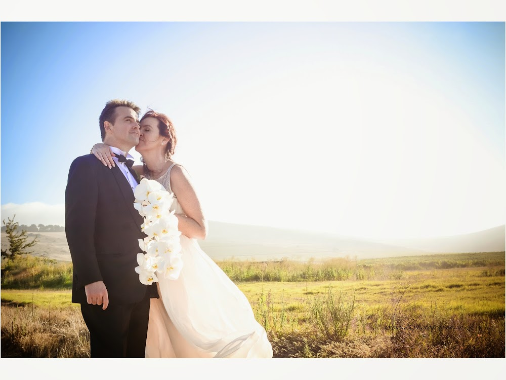 DK Photography last+slide-61 Ruth & Ray's Wedding in Bon Amis @ Bloemendal, Durbanville  Cape Town Wedding photographer