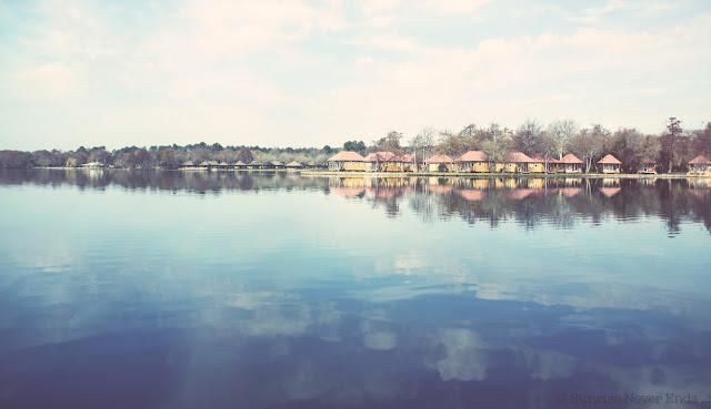 lac,soustons,landes