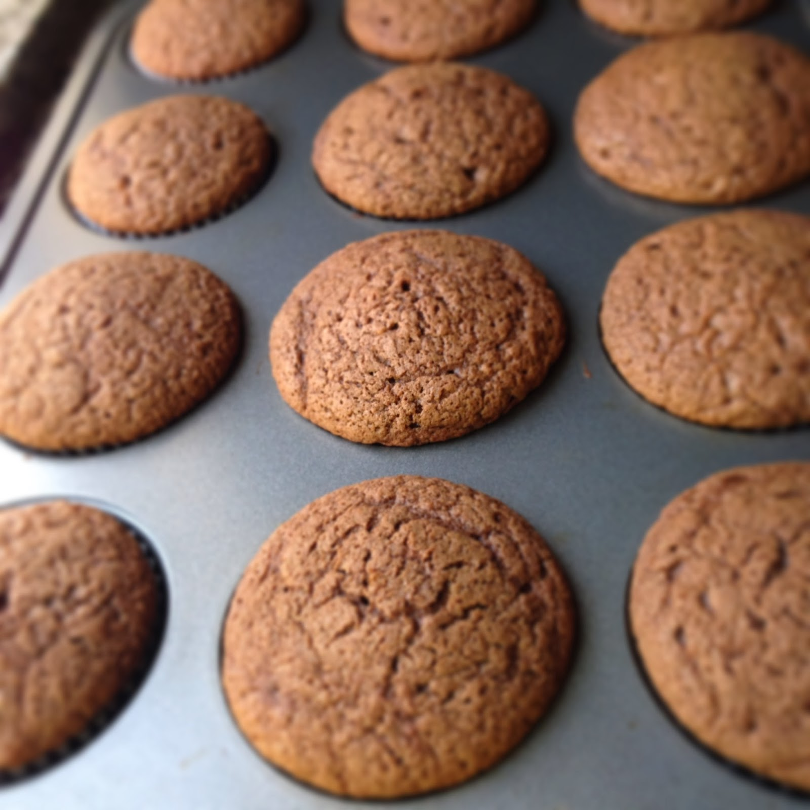Chocolate caramel turtle cupcakes