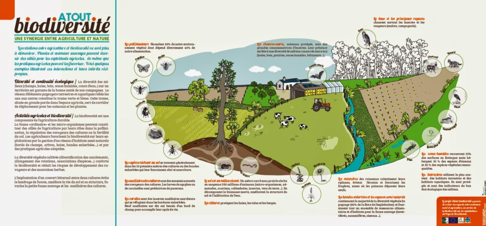 CPIE FORET DE BROCELIANDE, En Partenariat Avec La Chambre Du0027Agriculture Du0027 Ille Et Vilaine | Affiche Atout Biodiversité à Destination Des Agriculteurs  ...