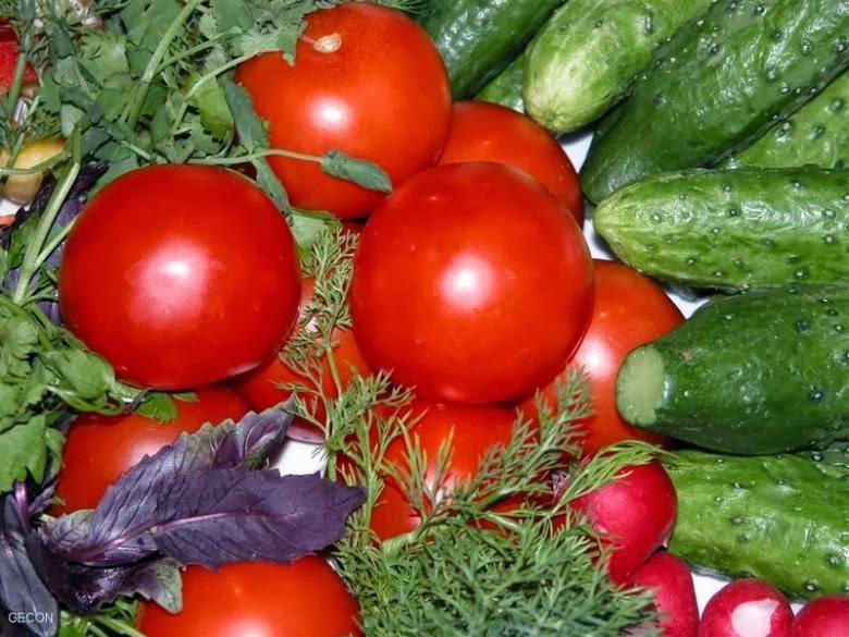 Овощная теплица