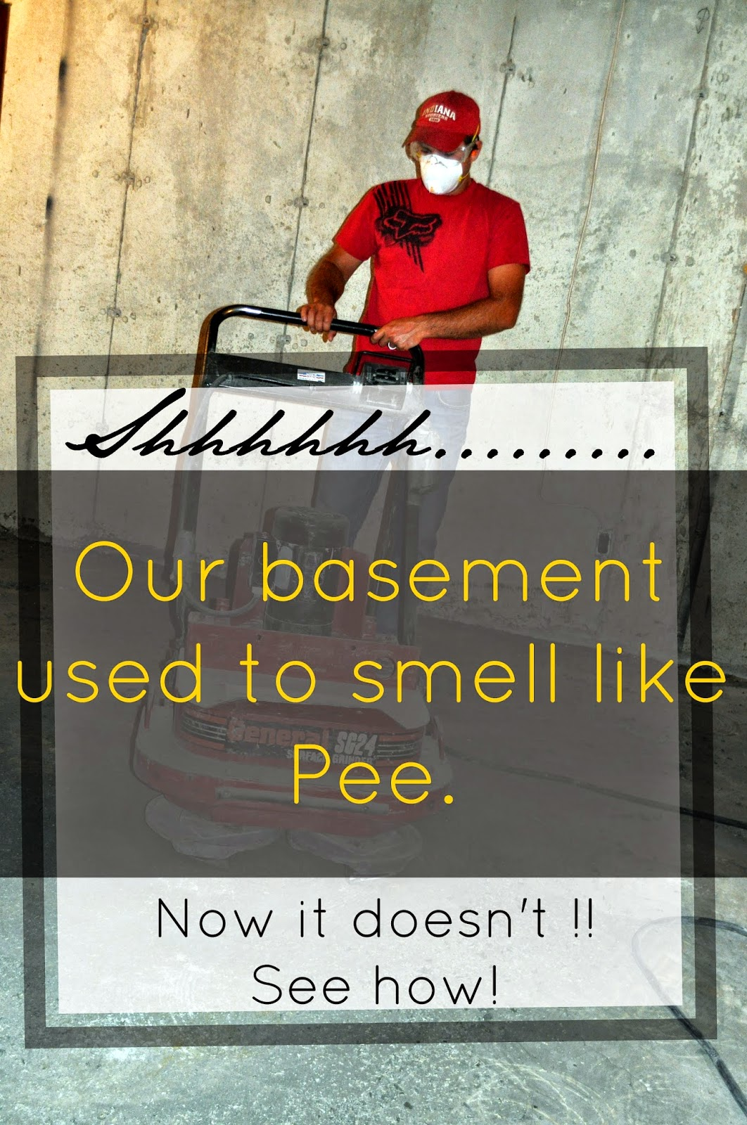 getting rid of pee smell in basement