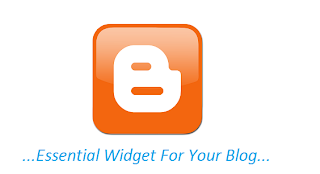 Top essentail widget for blog