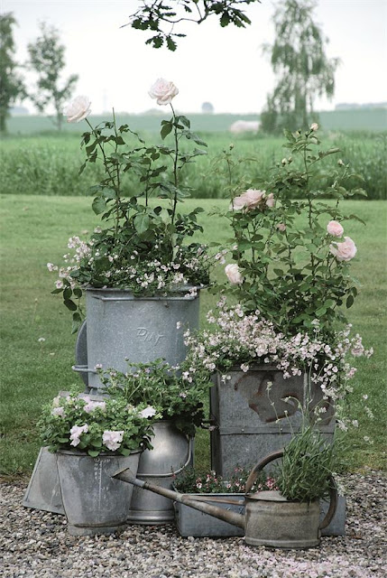 Galvanized Metal Tubs, Buckets, & Pails as Planters ...