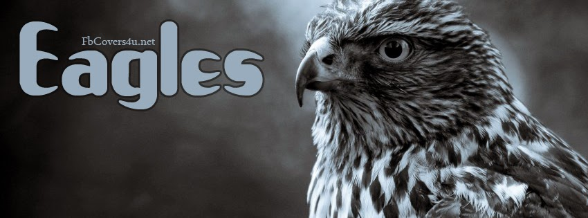 Eagle facebook covers