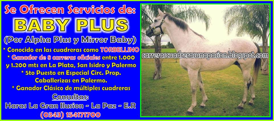 BABY PLUS - 22.04.2014