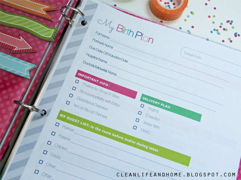 Clean Life and Home The Ultimate Pregnancy Planner Revised – Birthing Plan Worksheet