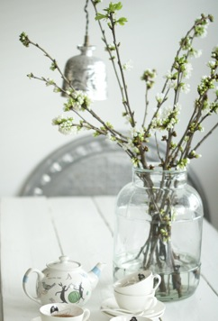 Blossom branches in a vase