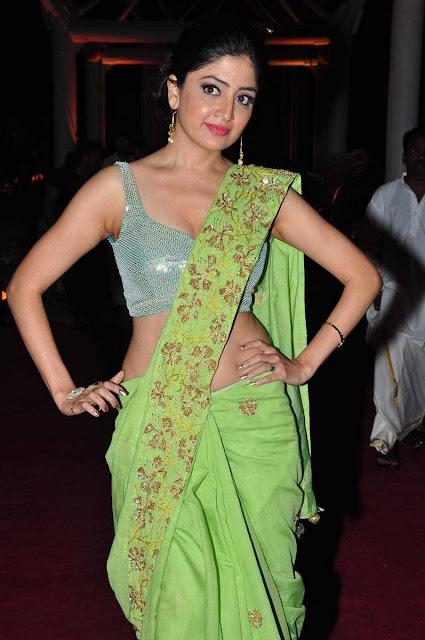 Poonam Kaur in Saree Spicy Choli